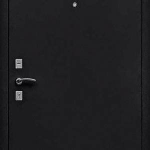 Порошковая дверь DR115